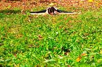 Yoga upavishta konasana pose