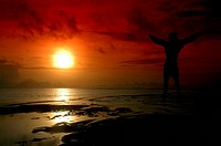 silhouette of a man jumping into the sun