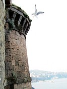 Fortificated bastion on the sea with a white gull