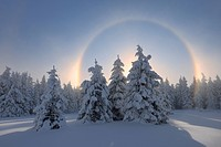 View of sundog with snowy landscape