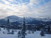 Scandinavian Lifestyle_winter view