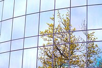 Office building reflections