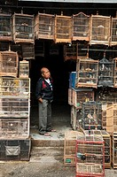 Wooden cages filled with birds at the bird and animal market in Denpasar, Southern Bali, Indonesia