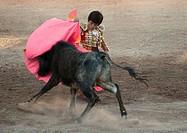 The 9 year old child matador RAFITA MIRABAL fights a bull in the Plaza de Toros _ SAN MIGUEL DE ALLENDE, MEXICO