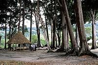 Radha Beach Resort in Radha beach, Havelock Island, Andaman, India
