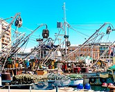 Fishing ships in the harbor