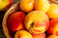 Juicy nectarines and apricots