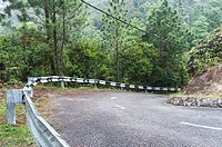 A curving road with a guard rail in the forests of Johor, Malaysia