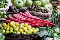 India, Uttarakhand, Haridwar, Various vegetables stand in market