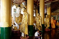 The Shwedagon Pagoda officially titled Shwedagon Zedi Daw also known as the Great Dagon Pagoda and the Golden Pagoda, is a 99 metres  325ft  gilded p...