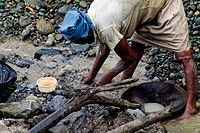 A barefoot Colombian woman miner diggs the goldbearing mud in the river San Juan near Tadó, Chocó dept , Colombia, 28 May 2004  Chocó is a no man´s la...