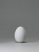 White hens egg standing on a white background