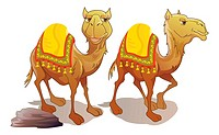 Two Camels, Brown, Smiling, vector illustration