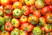 tomatoes in market raff tomato vegetable