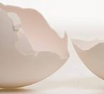 Close_up of a broken egg