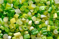 Green onion background