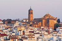 Montilla, Cordoba province, Montilla-Moriles area, , Andalusia, Spain