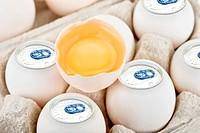 aluminium eggs