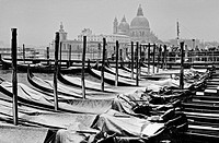 Gondolas with snow in front of the Santa Maria della Salute, Venice, Italy