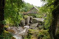 Bracklinn Falls, Callander, Loch Lomond and Trossachs National Park, Stirling, Scotland, United Kingdom, Europe