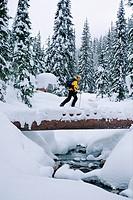 Ski touring, Connaught Creek, Roger´s Pass, British Columbia