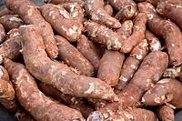 Food ; Kappa in Malayalam Tapioca Botanical name Manihot utilissima POHL ; Substitute to rice ; Kerala ; India