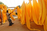 Fabric drying yard ; garment industry ; Tirupur ; Tamil Nadu ; India