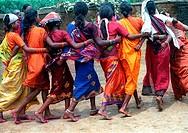 Tribal dance ; gaund madia ; Chhattisgarh ; India