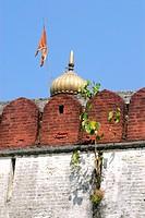 Tree of Piple grown in cracks of wall ; fortification of Shree Devdeveshwar temple ; Parvati hill ; Pune ; Maharashtra ; India
