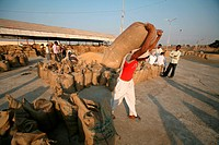 Worker carrying jute bag containing food grains at Harsud Mandi ; food-grains market in Bhopal ; Madhya Pradesh ; India