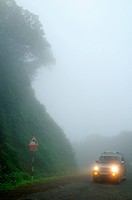 Headlights of vehicle in foggy atmosphere ; Mahabaleshwar ; Maharashtra ; India 13-September-2009