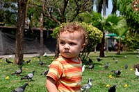 Child in the park next to the birds