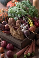 Assorted Multicolored Vegetable with Mud