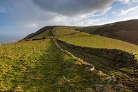 Landscape view over Exmoor in the Exmoor National Park near Lynmouth, Devon, England, UK, Europe