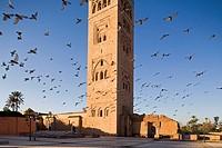 africa, morocco, marrakech, la koutoubia mosque