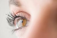 Close-up of brown eye