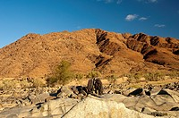 Richtersveld Transfrontier National Park,