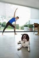 Dog with woman practicing yoga in living room