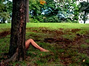 Woman's Bare Legs Sticking out From Behind Tree