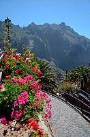 Masca Valley (Valle de Masca), Tenerife, Canary Islands.