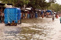 Flood due to heavy rain , Showing water logging people in flooded water , Monsoon, world record rain in  Bombay now Mumbai, Maharashtra, India