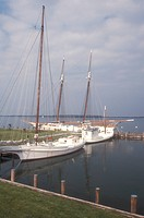 Chesapeake Bay Maritime Museum, Maryland, St. Michaels, Historic boats docked in the harbor at the Chesapeake Bay Maritime Museum in St. Michaels on t...