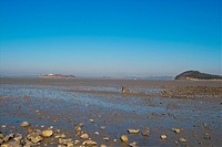 a broad beach spreading
