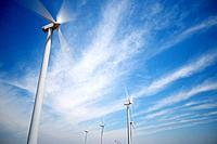 group of windmills for renewable electric energy production.