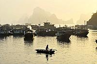 Vietnam, Ha Long bay a World heritage site of UNESCO, fishing boats in the port of Cai Rong.