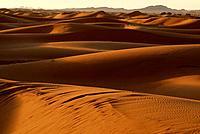 Daybreak in Erg Chebbi desert near Merzouga, southeast Morocco.