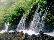 Nacientes Marcos y Cordero - beautiful trail on the island La Palma, going along water duct in Los Tilos Nature Reserve, La Palma, Canary Islands, Spa...