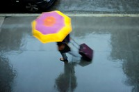 Woman Holding a Pink and Yellow Umbrella, Wheeling a Carry-on Suitcase, Rushing Down a Rainswept Street, Partial View of a Passing Car on the Top Left...