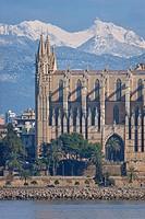 13th century Palma de Majorca Gothic cathedral. Tramuntana mountains behind. Majorca, Balearic islands, Spain