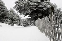 Guadarrama National Park, snowy lanscape with wooden fence, Cotos mountain pass, Rascafria, Navacerrada